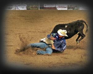 Rodeo SteerHead