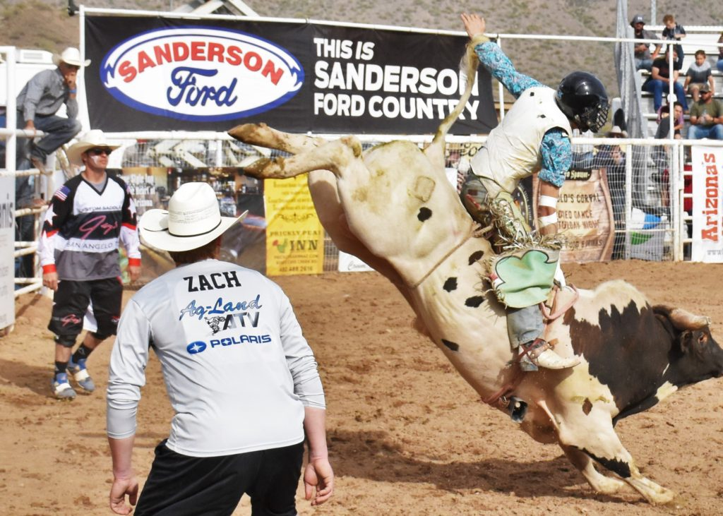 Bull Rider2