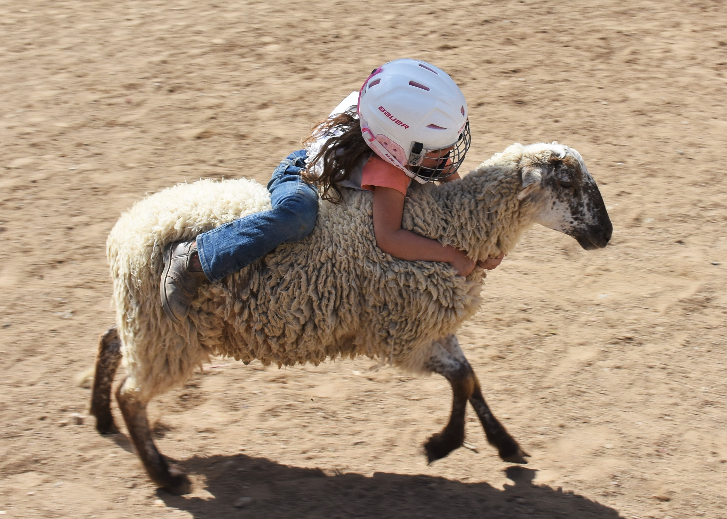 Mutton Bustin Cave Creek Rodeo Days